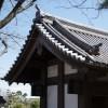 「のぼうの城」レビュー 成田長親役の野村萬斎さんの踊りが光る