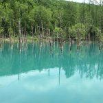 美瑛町「青い池」「白ひげの滝」観光レビュー