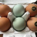 アクアファーム秩父の高級卵 彩美卵「輝」(かがやき)を食べてみた